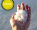 sea salt extraction