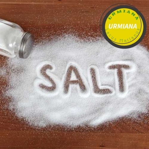 Consumption of salt in society