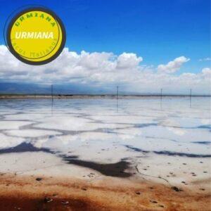 خصائص ملح بُحيرة أورميا
