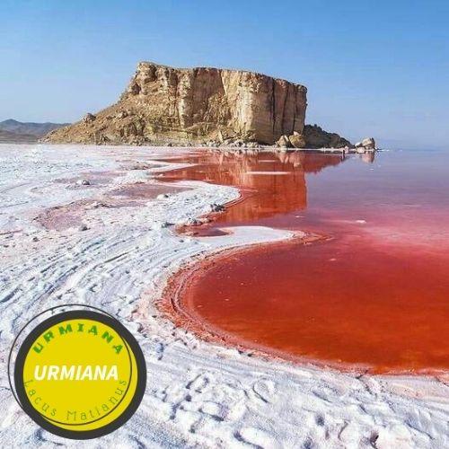 Where is Lake Urmia?