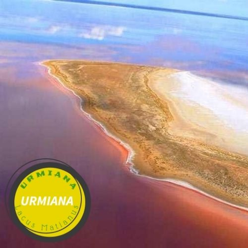 Australia Air Salt Lake