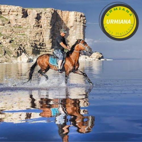 Lake Urmia Ecosystem