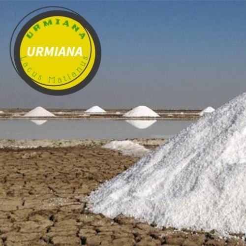 The best table salt